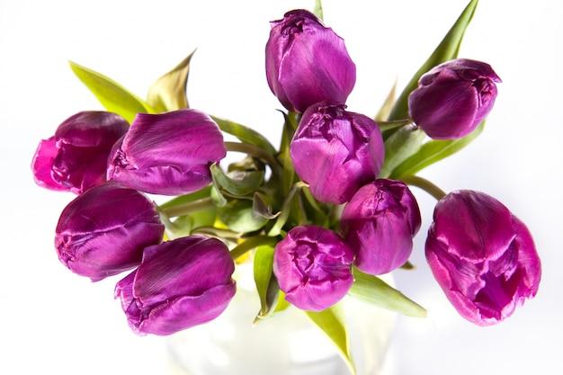 Ramo de tulipanes violetas