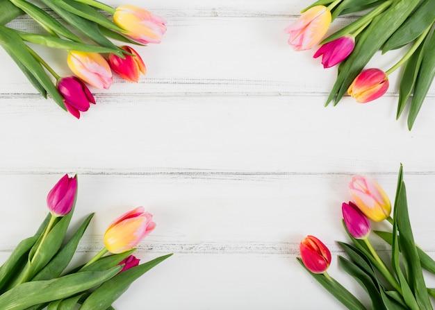 Ramos de tulipanes a lo largo de los bordes.