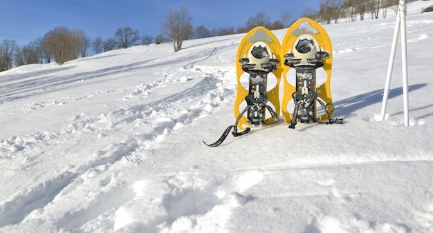 Raquetas de nieve y palos en la nieve.