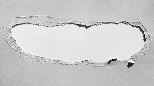 Rasgón de papel en escala de grises