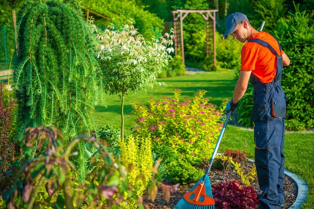 Rastrillar en el jardín
