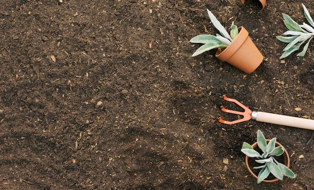 Rastrillo compuesto con macetas en suelo.