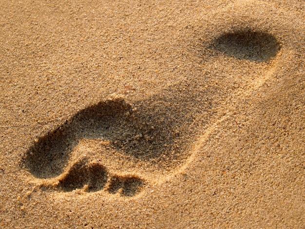 Rastro humano en arena húmeda y soleada