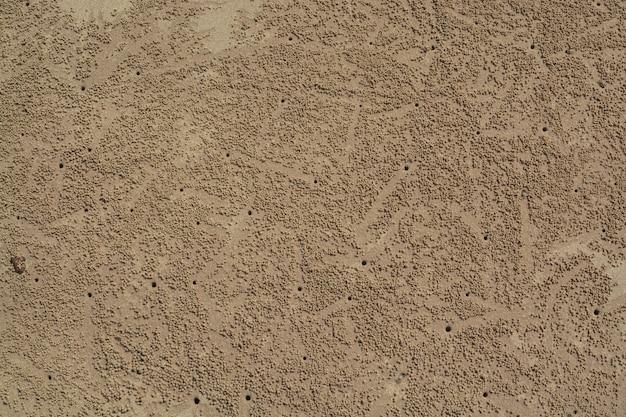 Rastros de cangrejos sobre arena amarilla. un fondo sobre el descanso y los viajes.