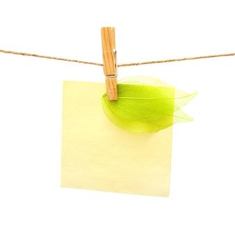 Recordatorio y hoja verde con pinza de ropa sobre fondo blanco.