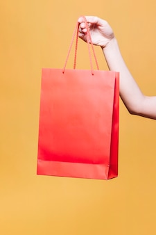 Recortar mano femenina con bolsa de papel