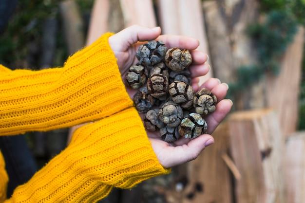 Recortar las manos con conos en la naturaleza