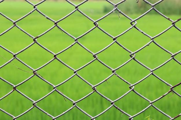 Red de metal, cerca de malla alambre de púas oxidado, cerca del acoplamiento de cadena, fondo de redes metálicas