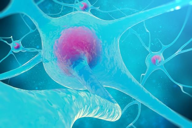 Red neuronal, células cerebrales, sistema nervioso.
