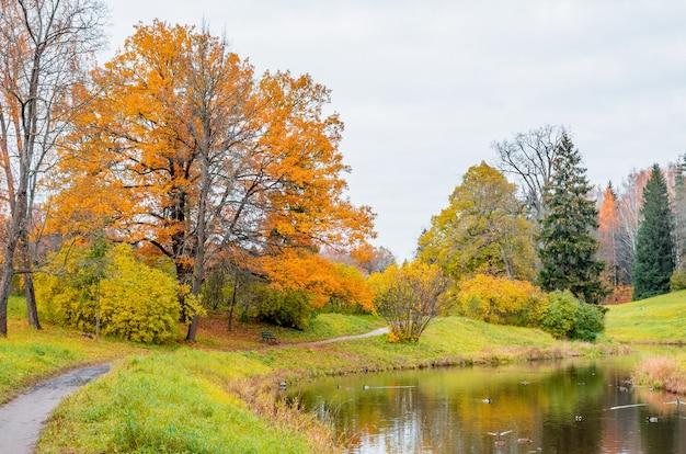 Reflexión del paisaje del otoño del paisaje del bosque en el lago.
