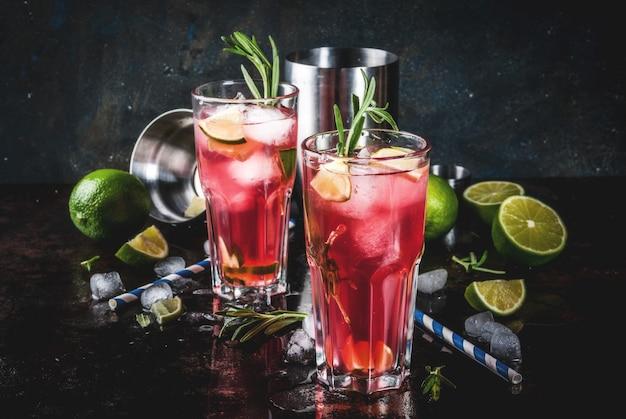 Refresco alcohólico cóctel de arándano rojo y lima con romero y hielo, dos vasos