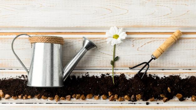 Regadera para flores