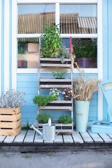 Regadera y plantas en macetas en el porche de la casa.