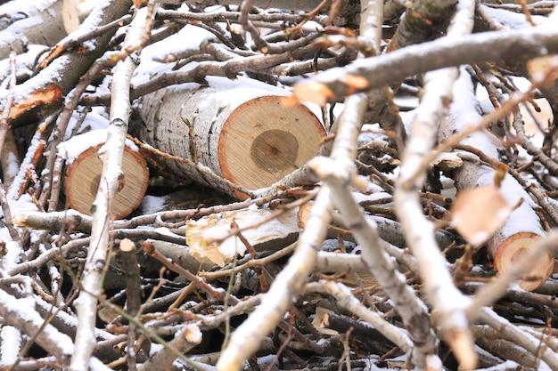 Un registro de madera aserrada de cerca y pequeñas ramitas en la nieve.