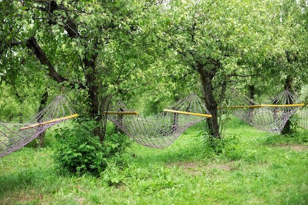 Relájese en las hamacas del jardín. jardín de verano con hamacas colgantes para relajarse.
