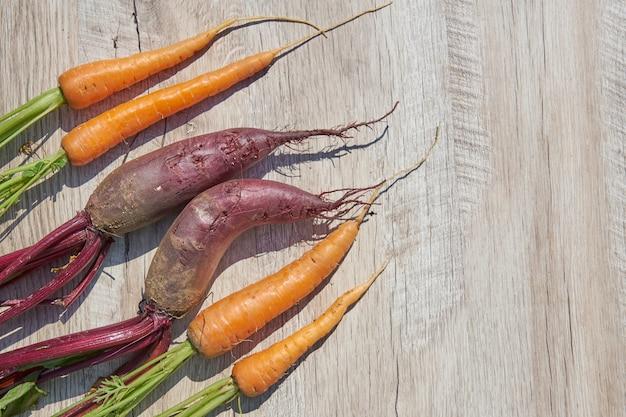 Remolacha y zanahoria orgánicas de cosecha propia recién cosechadas en la tabla de madera. vista superior, espacio de copia.