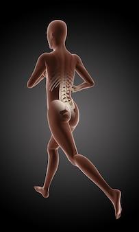 Render 3d de un esqueleto médico femenino corriendo