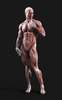 Render 3d de figuras masculinas posan con músculo