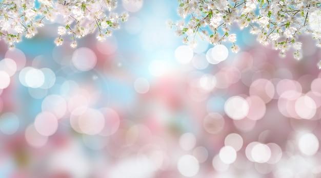 Render 3d de flores de cerezo borrosas con luces bokeh