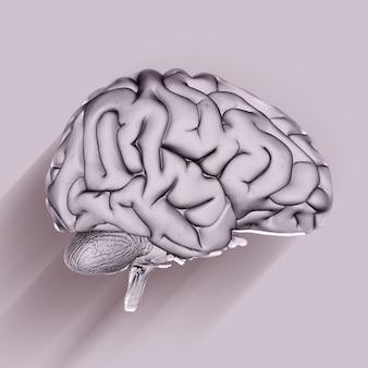 Render 3d de un fondo médico con cerebro