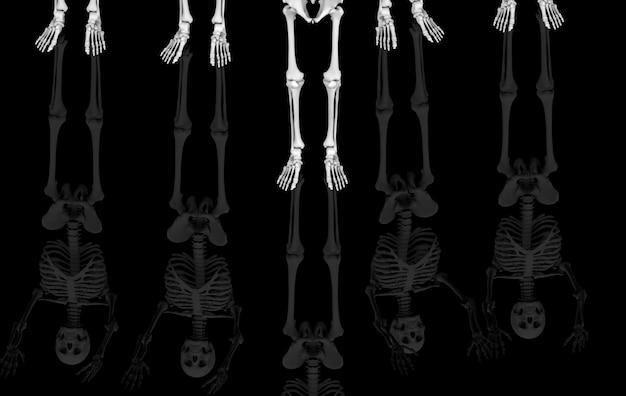 Representación 3d piernas del esqueleto humano cráneo esqueleto huesos con reflexión sobre negro. horror halloween.