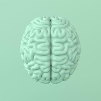 Representación del cerebro