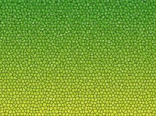 Reptiles textura de la piel
