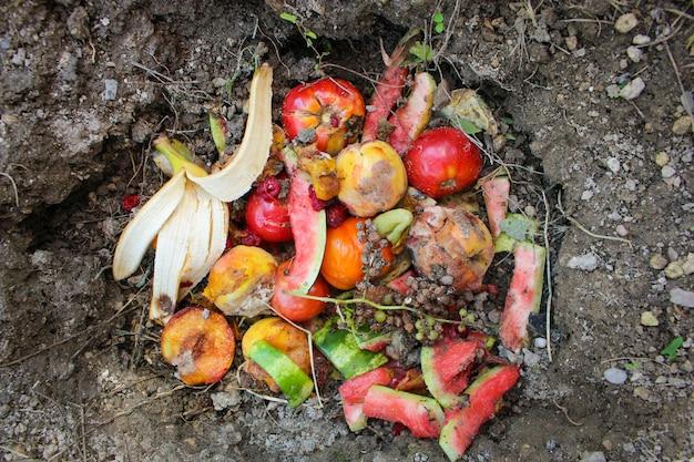 Residuos domésticos para compost de frutas y hortalizas en huerta.
