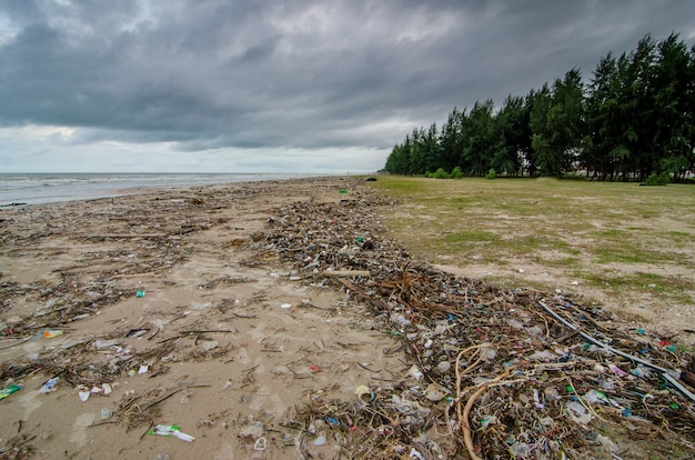 Residuos plásticos que llenan la playa
