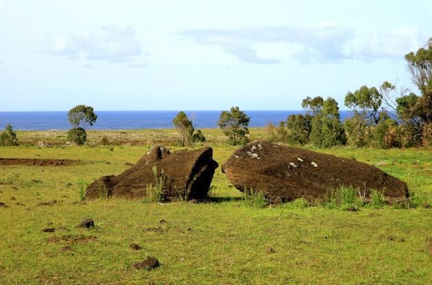 Restos de la estatua de moai tendidos en el suelo en la colina del volcán rano raraku, isla de pascua, chile