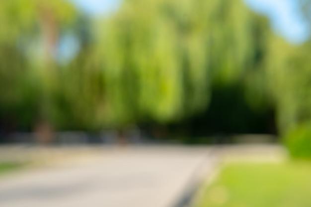 Resumen blur city park bokeh para un