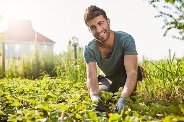 Retrato al aire libre de maduro apuesto joven agricultor en camiseta azul sonriendo, recogiendo bayas de su jardín, mirando a puerta cerrada con expresión de cara feliz