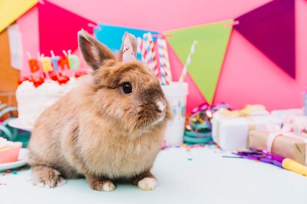 Retrato de un conejo con un pequeño sombrero de fiesta sentado frente a un pastel de cumpleaños