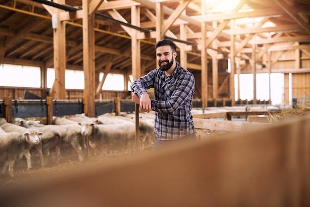 Retrato de exitoso agricultor ganadero de pie con orgullo en el establo de ovejas