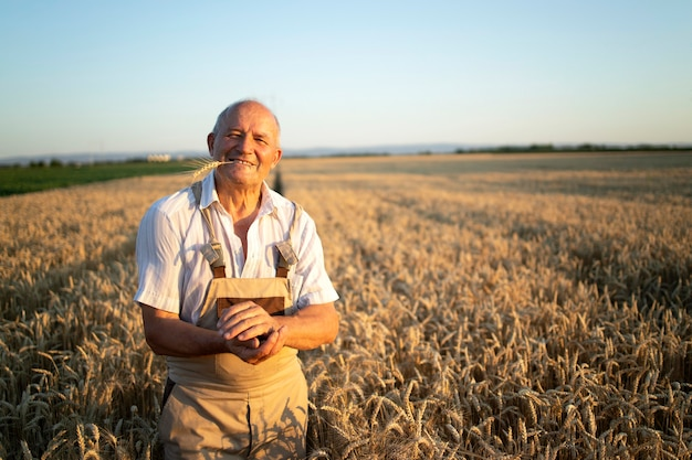 Retrato de exitoso agrónomo agricultor senior de pie en campo de trigo