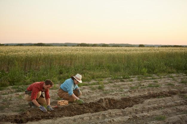 Retrato de gran angular de dos personas que trabajan en el campo en la plantación de hortalizas, se centran en el hombre y la mujer jóvenes plantando árboles jóvenes en primer plano, espacio de copia