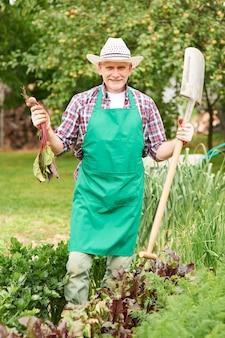 Retrato de granjero orgulloso con remolacha madura