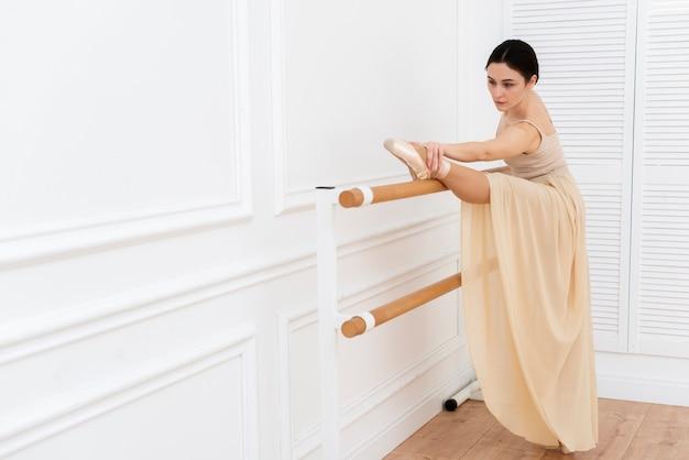 Retrato de la hermosa bailarina bailarina