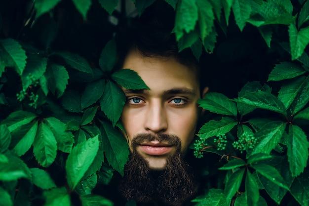 Retrato de un hombre guapo en hojas verdes de verano. forme al hombre moreno con los ojos azules, retrato en las hojas salvajes (uvas), fondo natural.