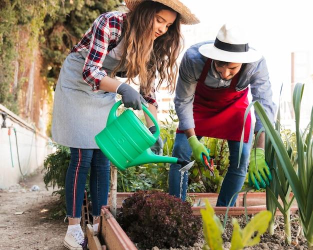 Retrato de un jardinero masculino y femenino regando y recortando las plantas en el jardín