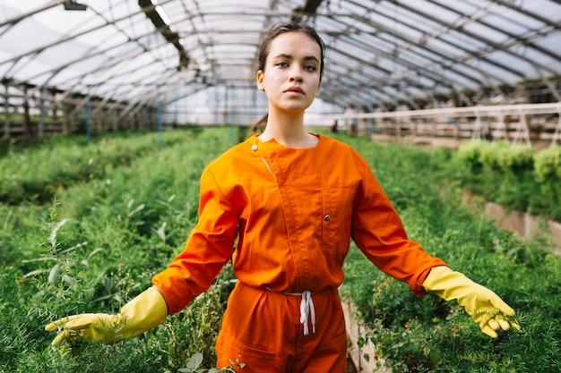 Retrato de un jardinero de sexo femenino que toca las plantas