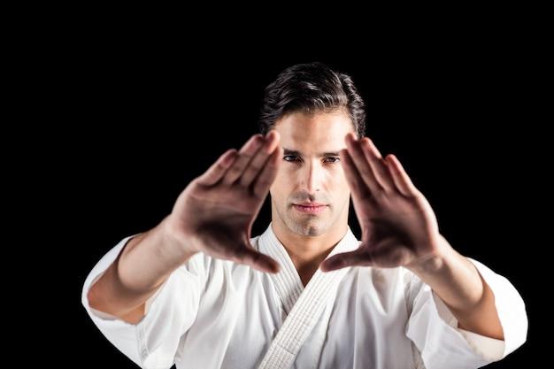 Retrato de luchador realizando postura de karate