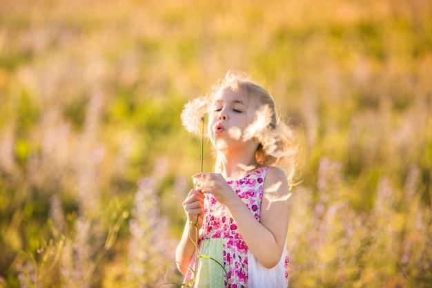 El retrato de la muchacha rubia con dandellion grande en el campo del flor en la puesta del sol.