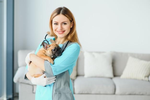 Retrato de perro examen veterinario femenino seguro en el hospital