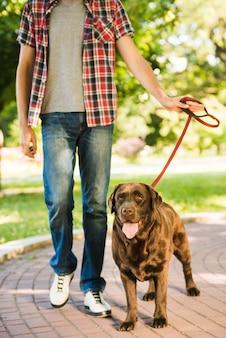 Retrato, de, un, perro, con, hombre, en el estacionamiento