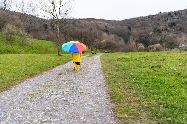 Retrato posterior de un niño pequeño caminando en la distancia a través de un prado o sendero del bosque con un impermeable amarillo, botas de lluvia amarillas y sosteniendo un paraguas de colores del arco iris en la mano