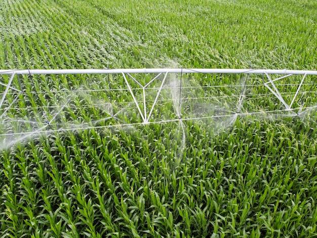 Riego del sistema de riego de maíz para regar cultivos en los campos