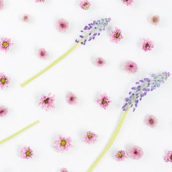 Rimel y estampado de flores rosa sobre fondo blanco