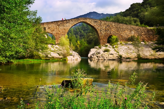 Río de montaña con puente medieval en pirineos