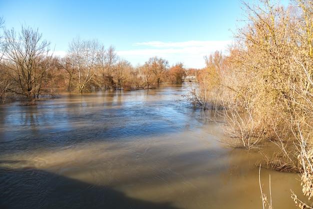 El río después de las lluvias salía de las orillas.